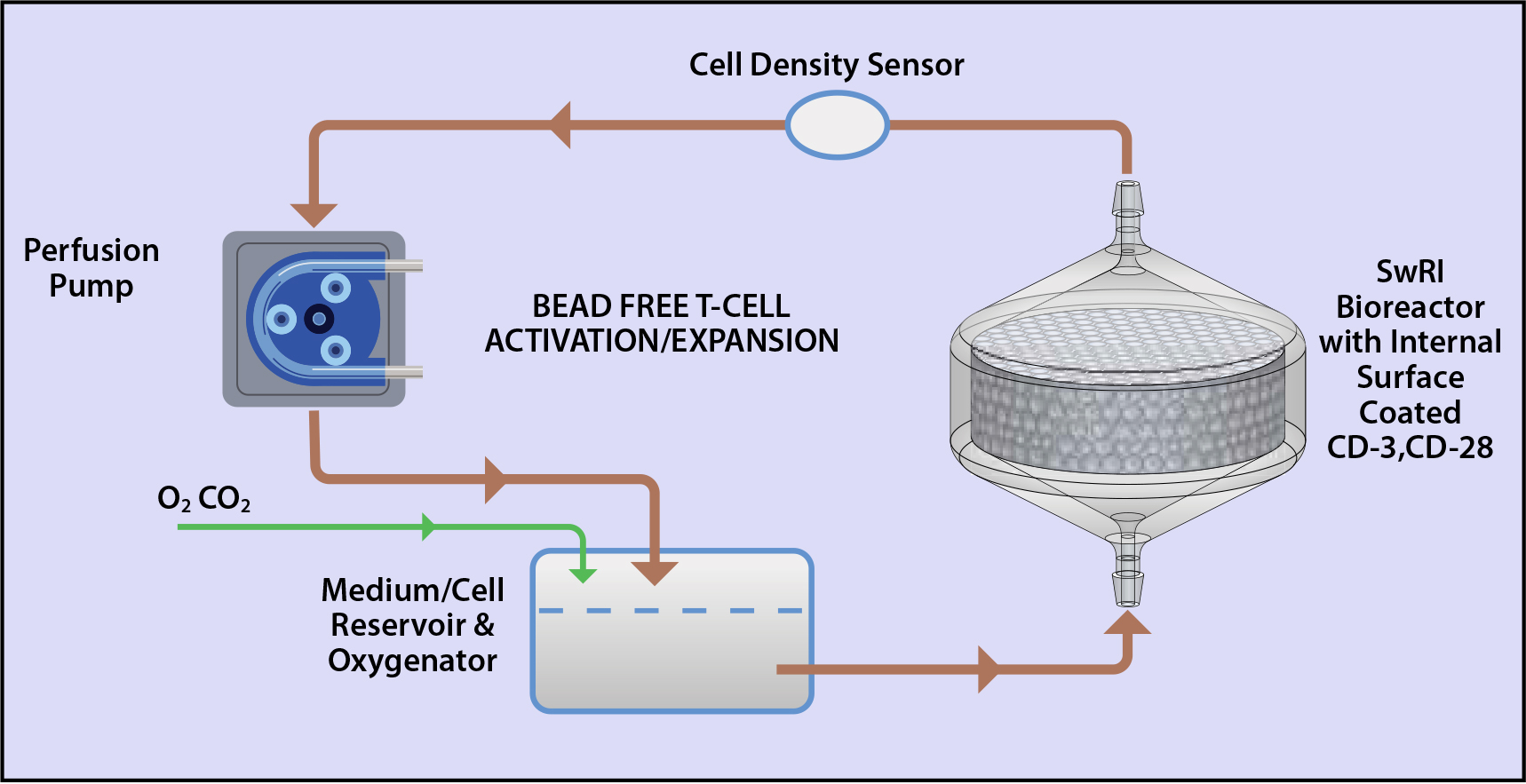 SwRI's bead-free perfusion-based system flow diagram