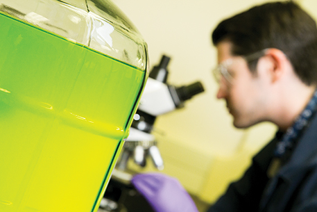 Biofuel processing in the lab