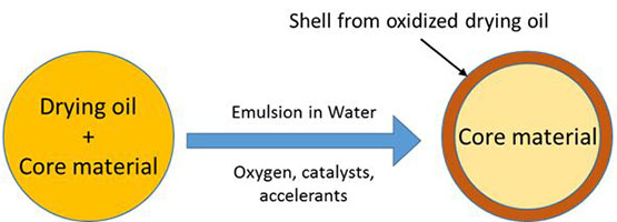 Figure 1: General schematic of the encapsulation process.