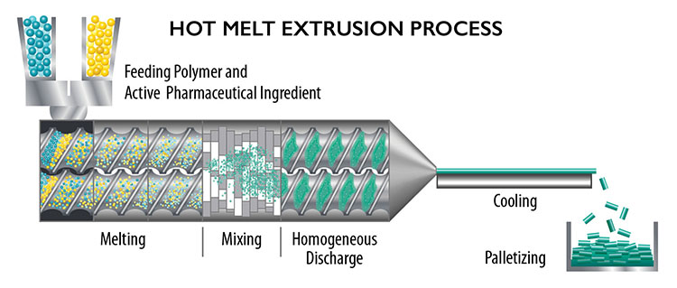 Cross section of the hot melt extrusion process