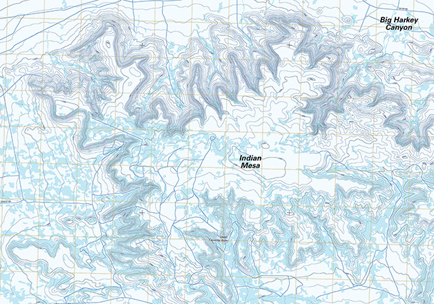 Topographic map of Indian Mesa