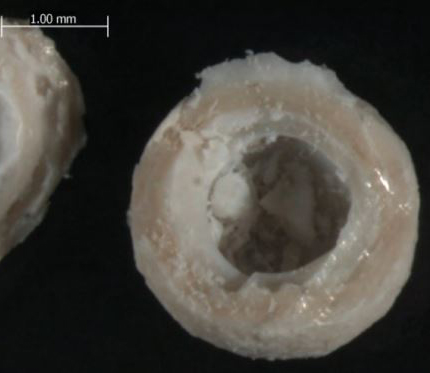 Micrograph of phase change capsules