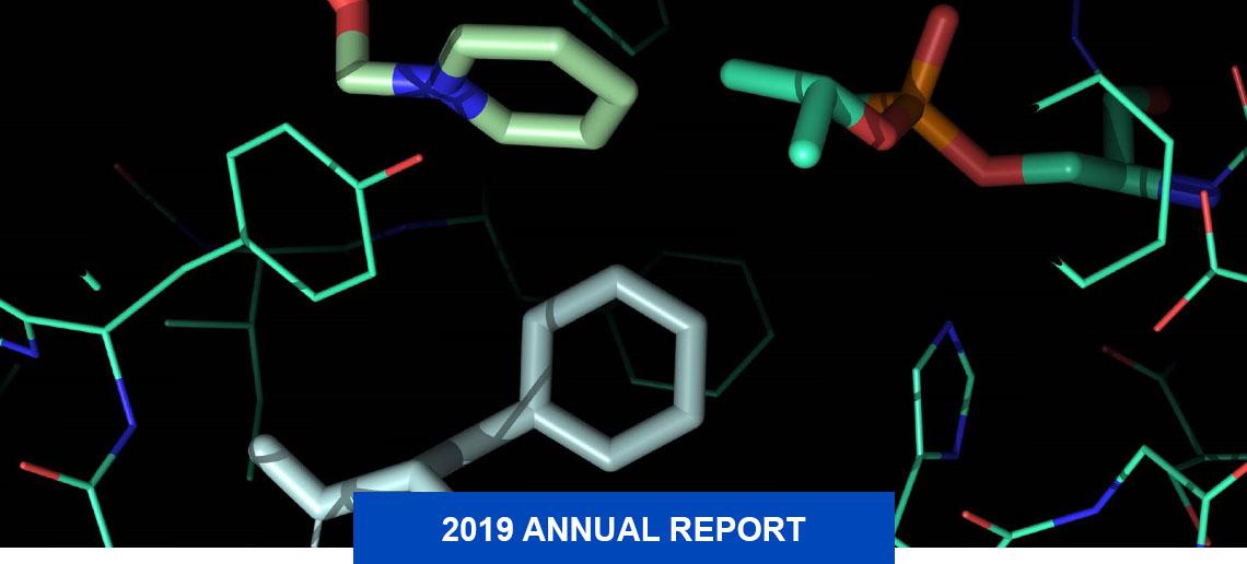 Screenshot of molecular models represented in different colors