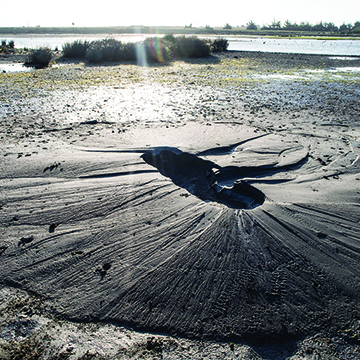 Sand volcano formation in New Zeland earthquake
