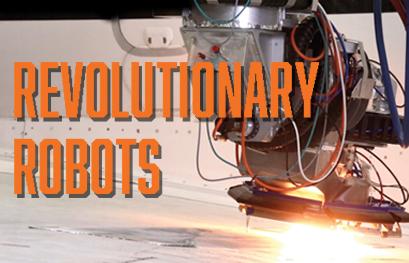 Go to Revolutionary Robots article
