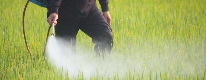 Go to Analytical Chemistry Services for Pesticide Registration