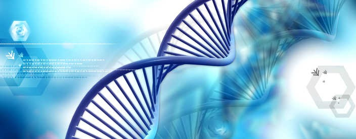 Go to Genetic Programming Environment for FIFTH (GPE5™)