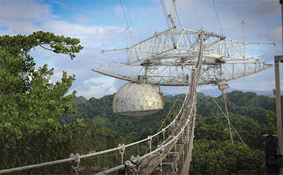 Observatory built above a tropical forest