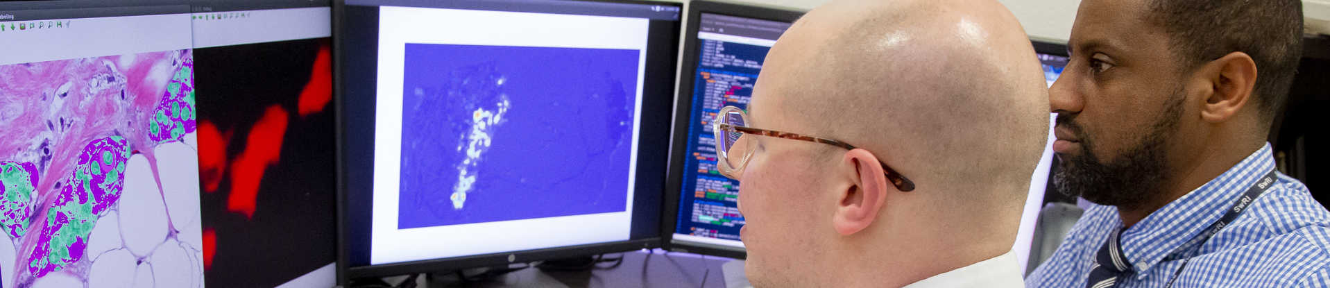 SwRI engineers David Chambers and Donald Poole analyze breast cancer tumor cells