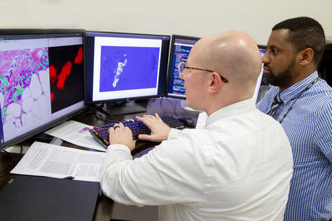 SwRI researchers viewing screens of cancer images