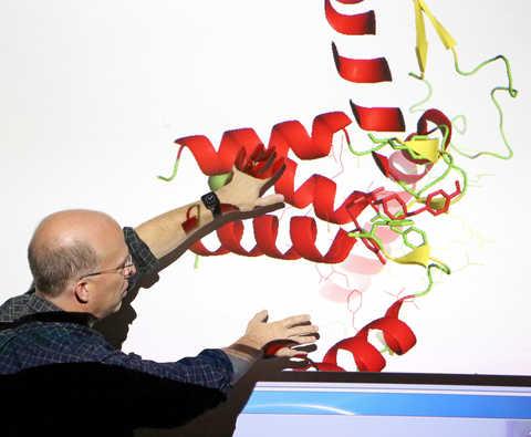 Dr. Jonathan Bohmann examining a model of the Ebola virus