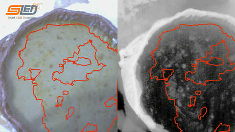 Two images, left has water with oil on top with an orange outline. Right image is thermal with a corresponding orange outline